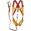 Rental store for HARNESS   LANYARD SET in Olympia WA